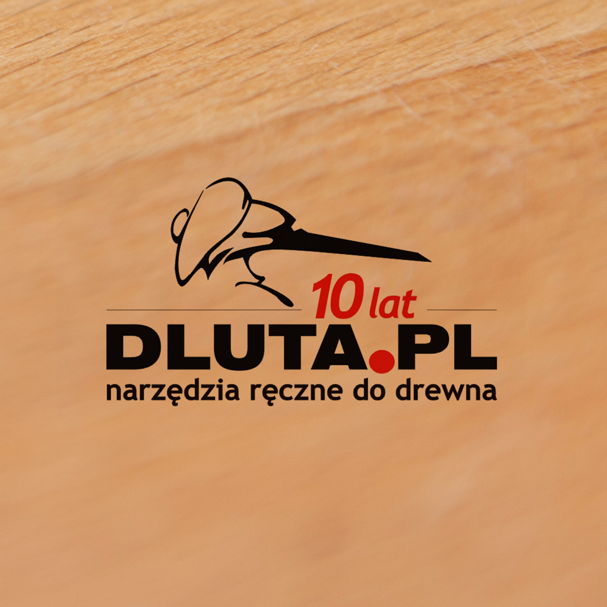 dluta_pl_4