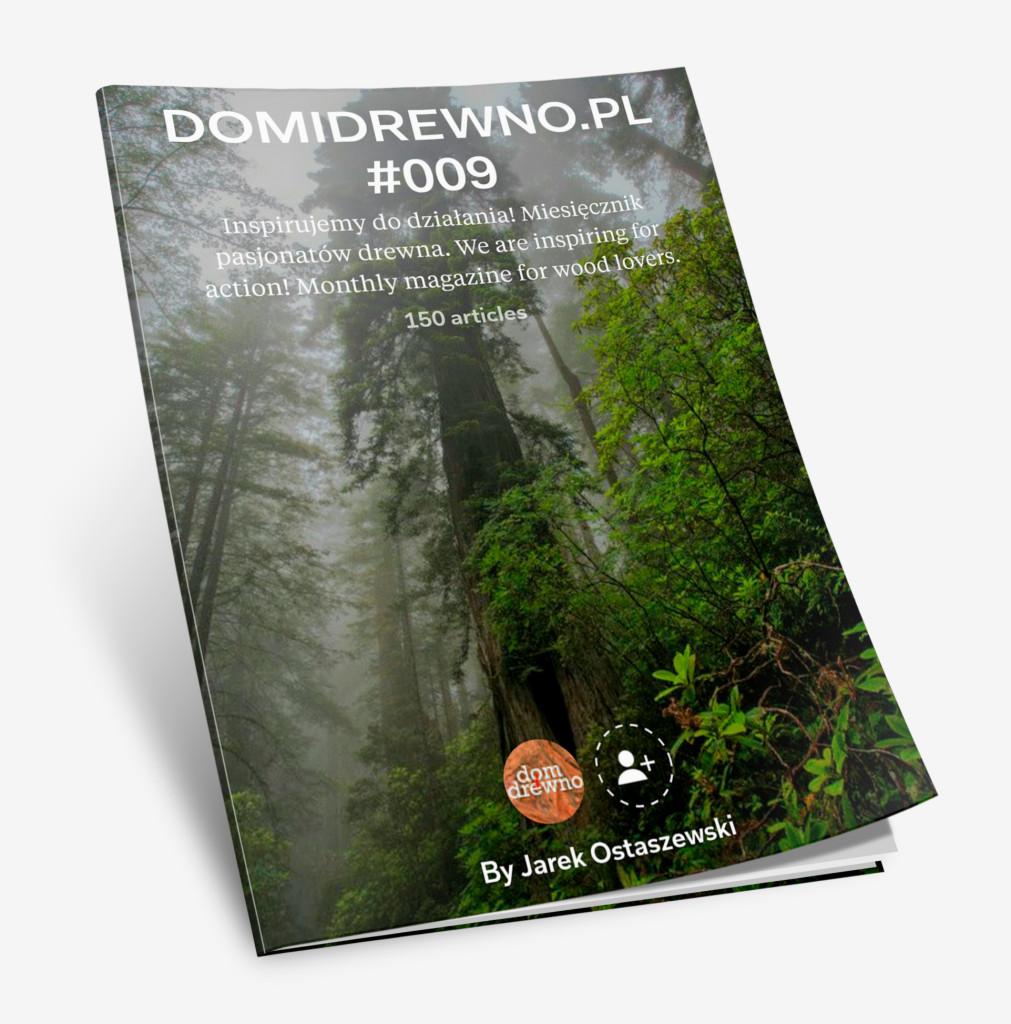 domidreno_mag_9